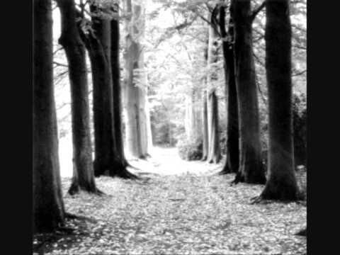 L'Âme Immortelle- Stern