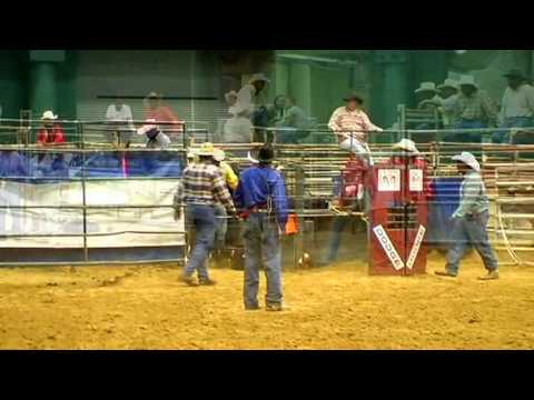 » Streaming Online Black Rodeo