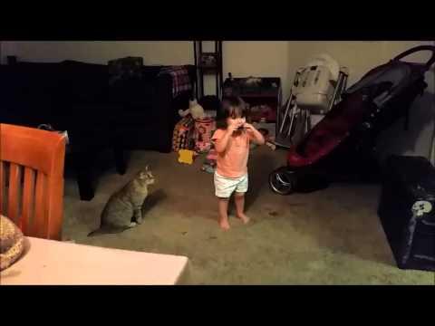 0 The Cat Who Disliked The Harmonica