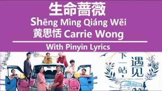 生命蔷薇 Shēng Mìng Qiáng Wēi / 黄思恬 Carrie Wong / 下一站,遇见 / Hello Miss Driver