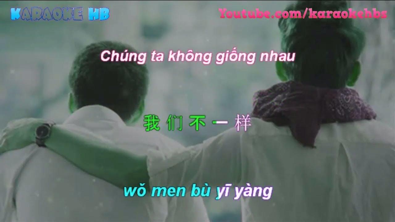 Wo Men Bu Yi Yang Pinyin Lyric | Chúng Ta Không Giống Nhau Vietsub