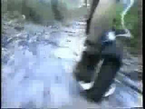 http://www.youtube.com/watch?v=RIU1e0xlqZA&search=Wheelman%20