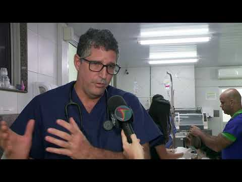 Especialista esclarece dúvidas sobre coronavírus e animais