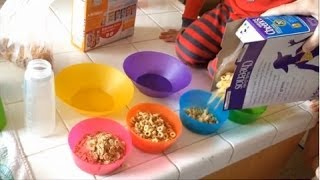 "Ever wondered what a day in our life is like?  Here is a 24 hour period with our family condensed into 15 minutes--rainy day version.   Shop our video:  Unbreakable, colorful cereal bowls http://go.magik.ly/ml/1cnm/ Kids' hooded shark towels http://go.magik.ly/ml/1cnn/ Hooded puppy towel http://go.magik.ly/ml/1cnx/ 100pc Hand Crafted Wooden Train set http://go.magik.ly/ml/1cny/ Step2 Skyward Summit giant climbing toy http://go.magik.ly/ml/1chg/ Big Wheel Tricycle http://go.magik.ly/ml/1co5/   Sunny day version here:  https://www.youtube.com/watch?v=Spe-iRgVdcU&index=5&list=PLLKQgNmktKFPbvUHdeZhHiuXsxqpz-5ml  Please subscribe to our channel: http://bit.ly/FFPSubscribe  Find pictures, updates, and more about Family Fun Pack:  Facebook: http://bit.ly/FamilyFunFB Twitter: http://bit.ly/FamilyFunTwitter Instagram: http://bit.ly/FamilyFunIG  New videos posted daily! Challenges, Epic Road Trips, Vlogs, Toys, and lots of other fun things!  We have 5 kids: Alyssa, David, Zac & Chris, all born within 39 months of each other.... and their baby brother Michael!  Our motto is ""fun with the family, every day"", and we really stick to this!!"