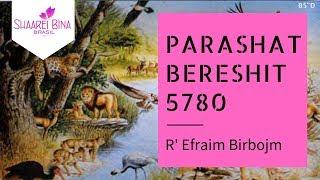 Parashá Bereshit 5780/ 2019