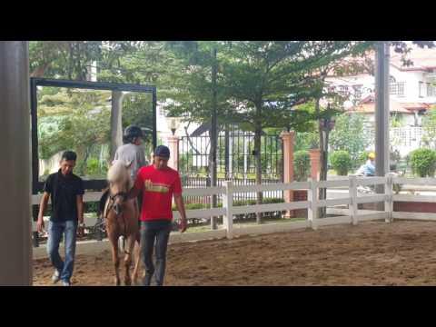 Video Terapi berkuda- Isyraf hazim