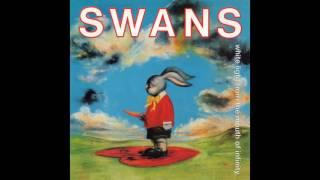 Swans - The Most Unfortunate Lie