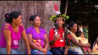 Podáali - Um documentário da música baniwa.