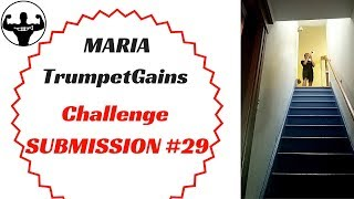 MARIA   TG Challenge Submission #29