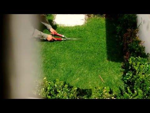 Como cortar el pasto del jardín con tijera- proyecto #7