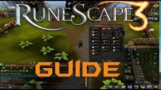 playing runescape 3 what is different teaching you the basics rh novom ru RuneScape Logo RuneScape Skill Capes