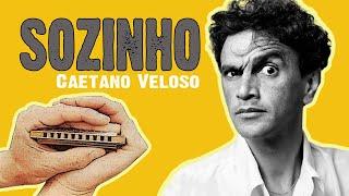 Eduardo Junior - Sozinho (Caetano Veloso cover instrumental com gaita de boca/harmônica + tablatura)