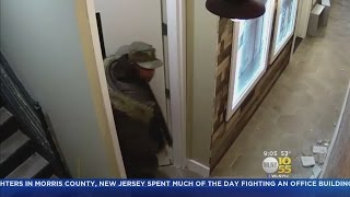 Suspect Sought In Brownsville Burglary Spree