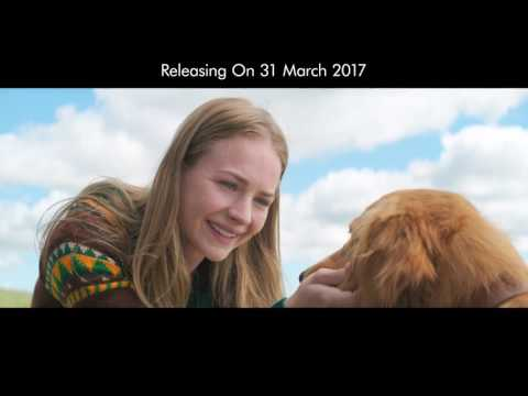 New Dialogue Promo for A Dog's Purpose