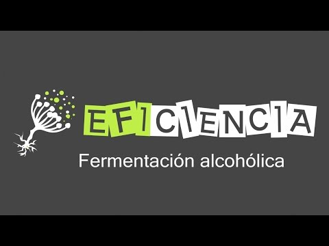La línea de acceso directo por el alcoholismo gratis