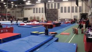 2019 CWG - Artistic Gymnastics - Female Team Final -  Subdivision 3/Apparatus 2