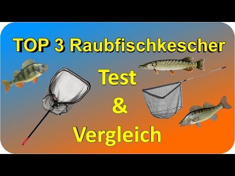 Raubfischkescher TEST & Vergleich | Top 3 Raubfischkescher Testbericht/Kaufempfehlung