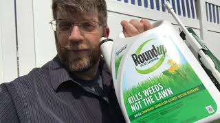RoundUp for Lawns Review - Before and After - Does It Kill Weeds without Hurting Your Grass?