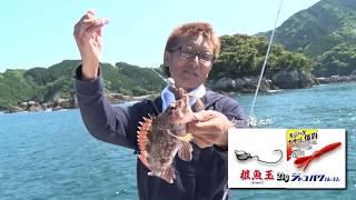 20180602ルアー合衆国PLUS「一誠」海太郎アイテムを屈指してフィールド調査。シーズン先取り根魚玉ゲーム!