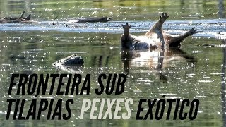 Dica de pesca sub no final do Filme!