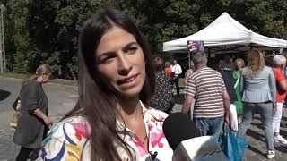 Szentendre Ma / TV Szentendre / 2021.09.08.