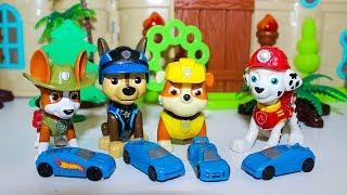 Щенячий патруль Мультики для детей Щенки ищут Сюрпризы Мультфильмы для детей про Игрушки