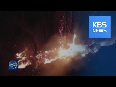 OUTBREAK OF WILDFIRES DURING WINTER / KBS뉴스(News)