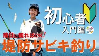 【堤防サビキ釣り】初心者が迷わない!基本の堤防サビキ釣り