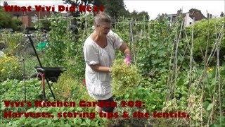 Vivi's Kitchen Garden 208: Harvests, storing tips & the lentils.