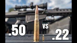 .50 BMG vs .22 LR