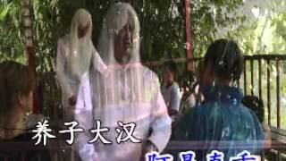 陳金水最新,大二爷伯劝世精选歌曲Vcd+Cd,二四孝