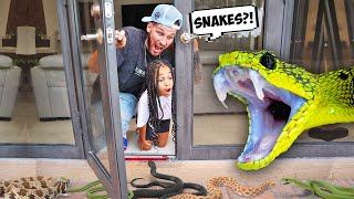 the SNAKES had BABIES in our BACK YARD | FamousTubeFamily