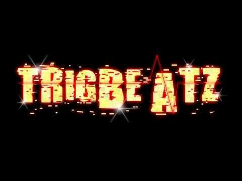 TRIGBEATZ- FRUITY LOOPS 9 BEAT 4