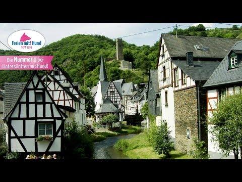 Reiseführer Auf ins Hundeparadies: Urlaub mit Hund in der Eifel!