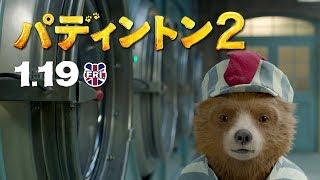 映画『パディントン2』TVCM30秒ランドリー篇・新