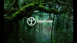 Deep Forest   Sweet Lullaby (live)