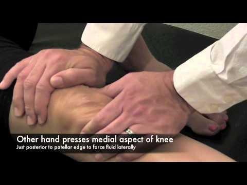 Rückenschmerzen und häufiges Urinieren Ovarien