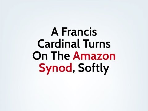 A Francis Cardinal Turns On The Amazon Synod, Softly