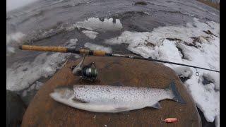 Рыбалка в ленинградской области на финского залива