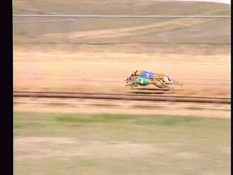 Race 46
