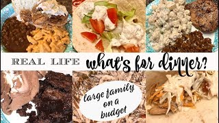 WHAT'S FOR DINNER & DESSERT || REAL LIFE MEAL IDEAS FOR A FAMILY ON A BUDGET