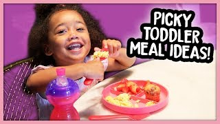 What My Toddler Eats in a Day! (Picky 2 Year Old + Quick Meal Ideas)