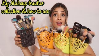 MY Makeup Brushes Collection || Shystyles