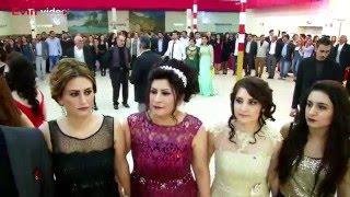 Imad Selim#Daweta Bazid & Maha#25.03.2016# Ross Dekoration# Kurdische Hochzeit Part 2 #Evin video®