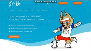 SCAM  WolfBet - 25 % за 24 часа