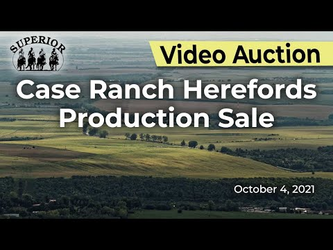 Case Ranch Herefords Production Sale