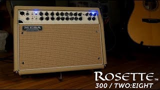 Mesa Boogie Rosette Combo 2x8 - Video