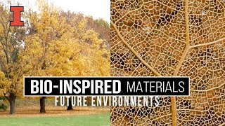 Thumbnail of Future Environments: Bio-Inspired Materials video