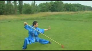 Wushu Qiang 5 Duan 五段枪术