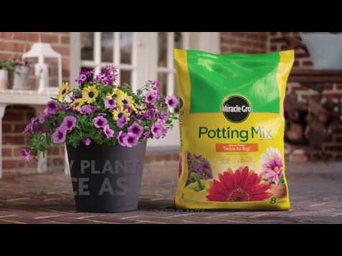 How to Use Miracle-Gro® Potting Mix for Container Gardening
